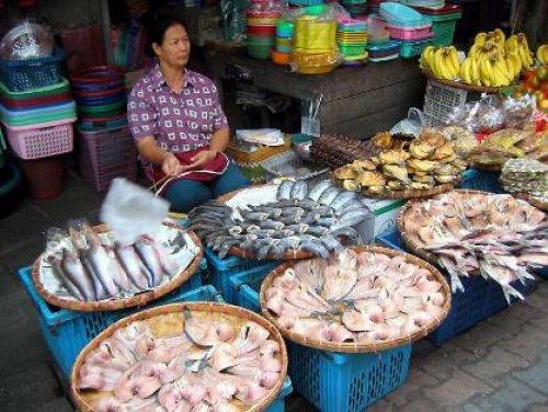Wandeltocht Chiang Mai