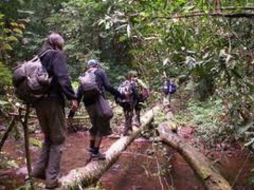 Laos.Luang Namtha trekking