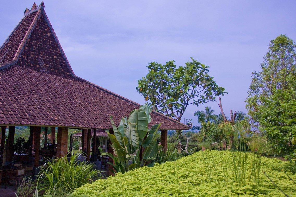 Dago guesthouse - Kampung Padi