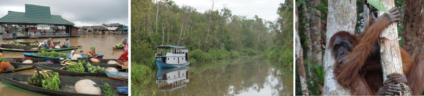 Vakantie Kalimantan