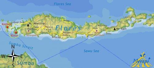 Map Flores 10d