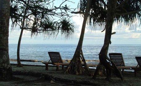 Collin Beach
