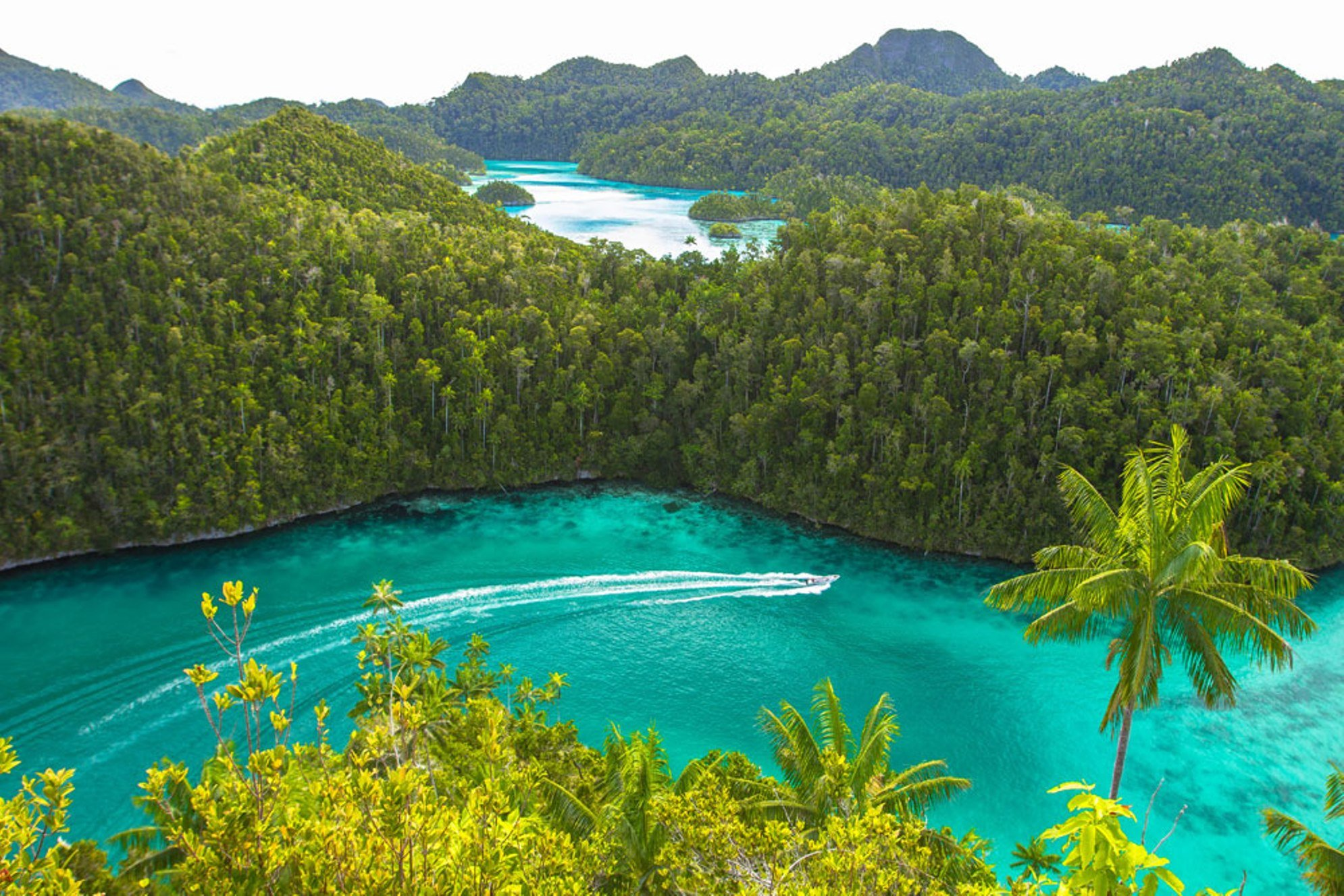 Jewels of Raja Ampat - Misool