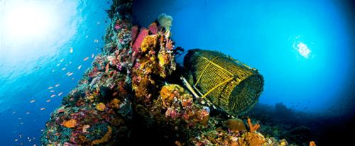 Alor fish trap